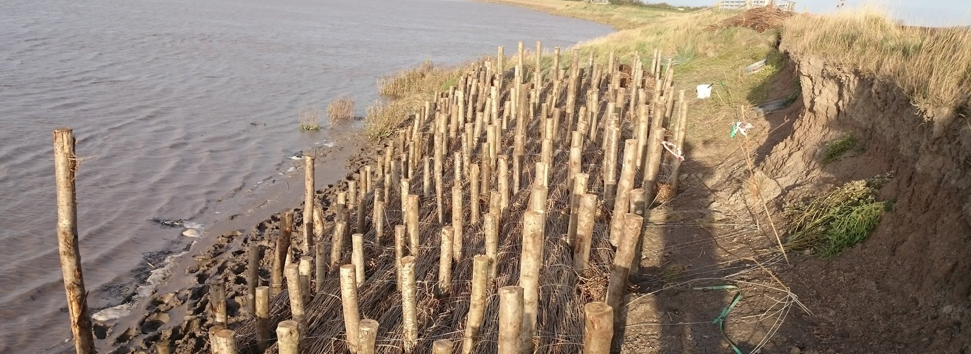 Erosion control using nature as your supplier